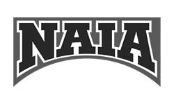 NAIA Logo transparent 250x250 2